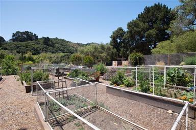 131 Hacienda Carmel Photo #18
