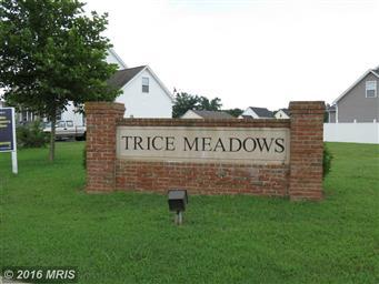 1107 Trice Meadows Circle Photo #30