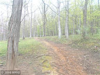 315 Meadow View Lane Photo #26
