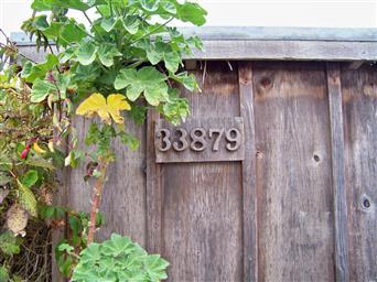 33879 East LN Photo #32