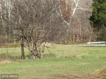 100 Parrill Hollow Photo #6