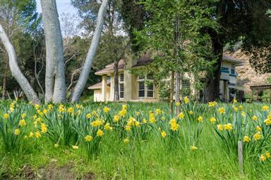 45650 Carmel Valley Road Photo #29