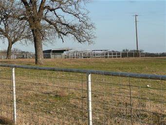 2751 County Road 170 Photo #14