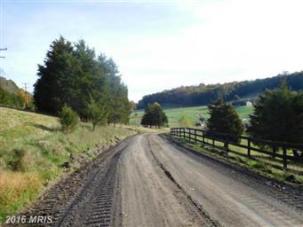221 Private Ranch Road Photo #22