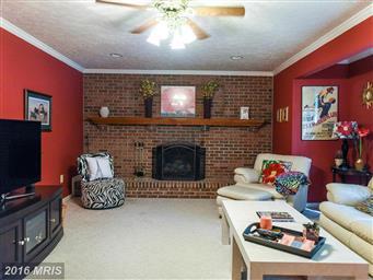 23927 Sheperdson Lane Photo #5