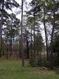 605 Greenbriar Trail Photo #25