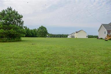 9064 Morgans Ridge Drive Photo #103