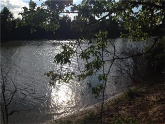 1014 River Plant Road Photo #31