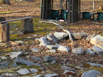 2140 Birchwood Drive Photo #6