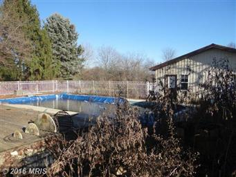 450 Larkspur Lane Photo #9