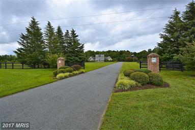 516 Goose Landing Farm Lane Photo #1