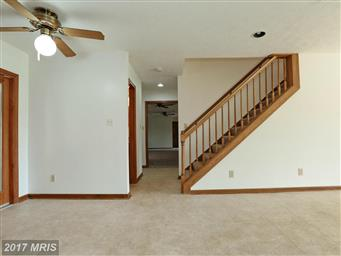 43425 Leener Lane Photo #13