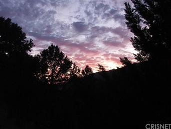 2328 Overlook Ct Photo #33