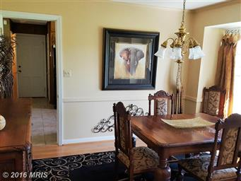 11435 Country Hill Court Photo #7