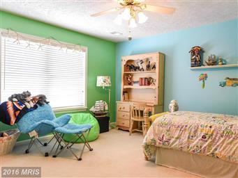23927 Sheperdson Lane Photo #15