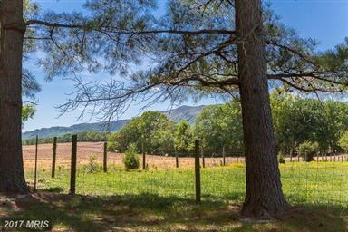 1492 Strole Farm Road Photo #5