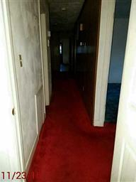 216 Carrie Drive Photo #8