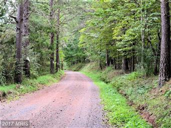 0 Kump Road #HS9760355 Photo #7