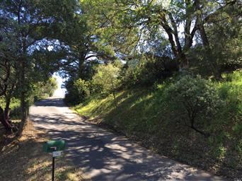 1941 Ridge Road Photo #27