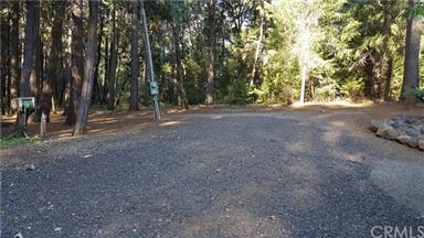 5283 Deer Trail Photo #61