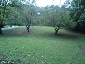 29040 Autumnwood Drive Photo #3