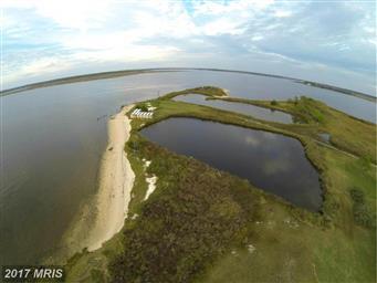 9050 Fishing Island Road Photo #6