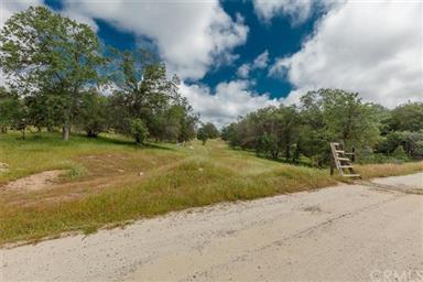 3979 Oak Grove Road Photo #54