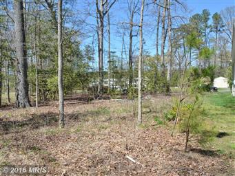 333 Piney Forest Dr Photo #30