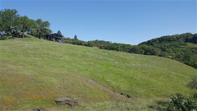19200 Mountain House Road Photo #28