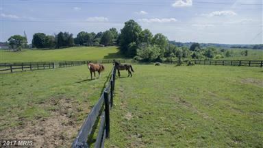 6010 Woodberry Farm Road Photo #29