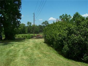 246 County Road 4072 Photo #10