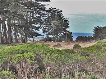 640 Sea Cypress Drive Photo #6