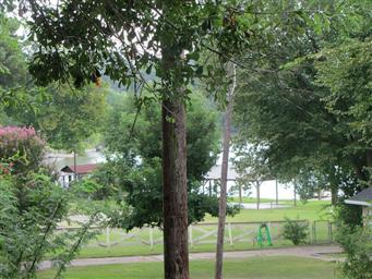 898 Tripple Creek Loop Photo #26