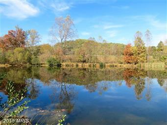 70 Shallow Creek Ln Photo #18