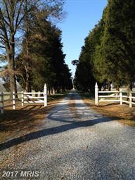 24091 Providence Plantation Lane Photo #29