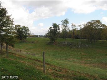 13732 Hollowell Church Road Photo #24