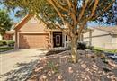1197 Beechwood Drive, Kyle, TX 78640