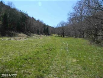 22971 Bennett Run Road Photo #18