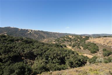 27454 Vista Del Toro Place Photo #40