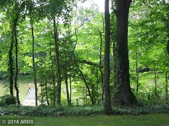 49778 Fresh Pond Neck Road Photo #8