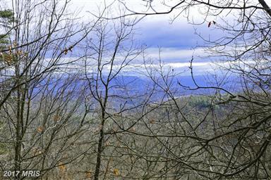 4388 Supinlick Ridge Road Photo #5