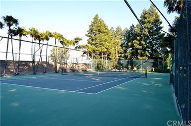 437 Brett Court Photo #12