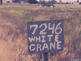 7246 White Crane Road Photo #22