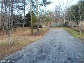 290 White Oak Trail Photo #11