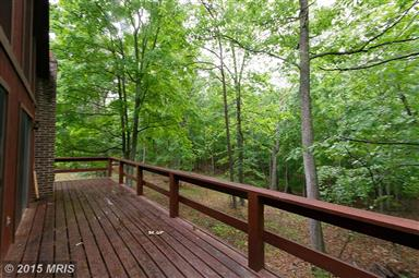 671 Plum Tree Lane Photo #9