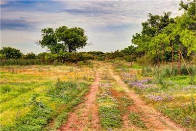 1026 County Road 365 Photo #24