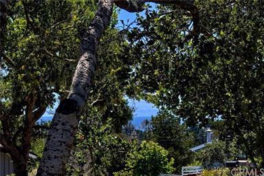 1145 Pinewood Drive Photo #3