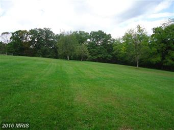 11545 Fort Valley Road Photo #28