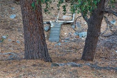 2309 Woodland Dr Photo #16