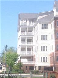 301 Muir Street #202 Photo #4
